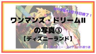2019年12月13日終了!ワンマンズ・ドリームⅡ の写真③【ディズニーランド】