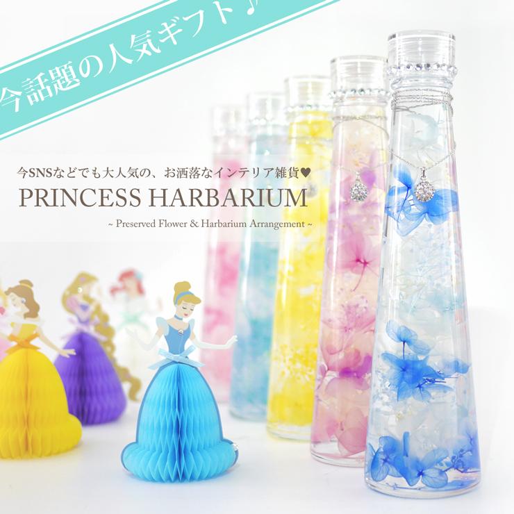 プリンセス・ハーバリウムの画像