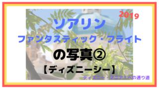 【2019】ソアリン:ファンタスティック・フライトの写真②【ディズニーシー】