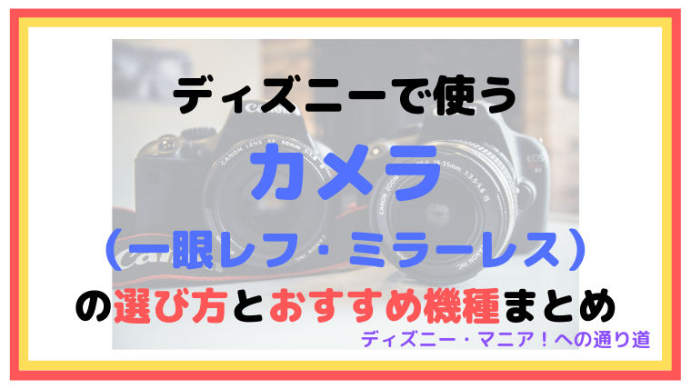 【2019】ディズニーで使うカメラ(一眼レフ・ミラーレス)の選び方とおすすめ機種まとめ