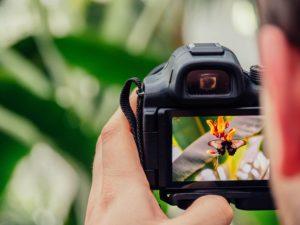 カメラのモニターのイメージ画像