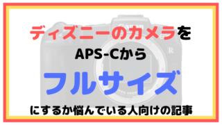 ディズニーのカメラをAPS-Cからフルサイズにするか悩んでいる人向けの記事