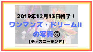 2019年12月13日終了!ワンマンズ・ドリームⅡ の写真⑥【ディズニーランド】