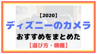 【2020】ディズニーにおすすめのカメラまとめ(一眼レフ・ミラーレス)【選び方・機種】